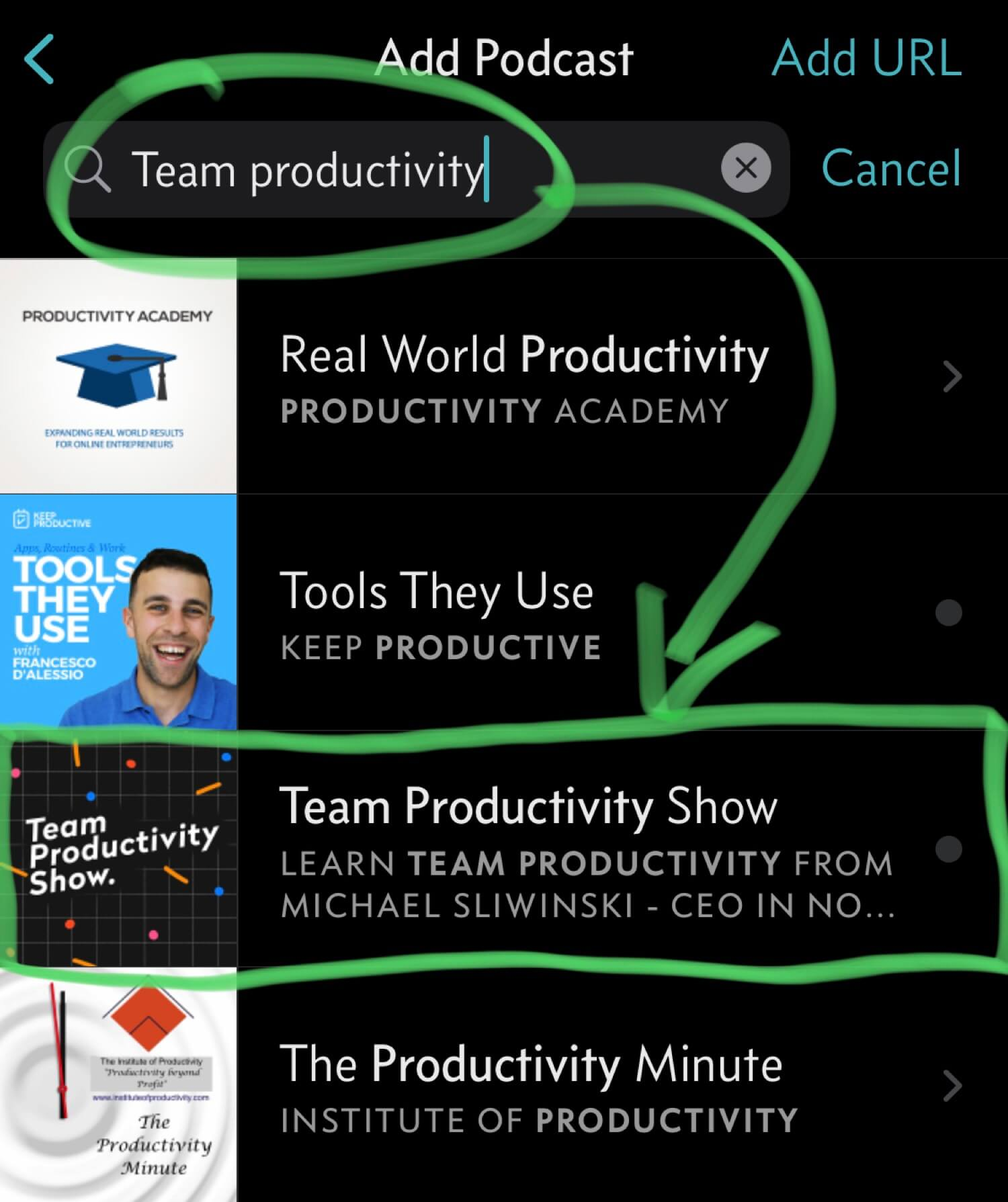 Subscribe to my Team Productivity Show as an audio podcast!